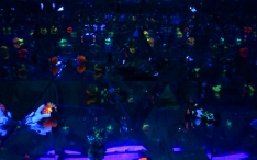 Comet Arena (multi mirror 3)
